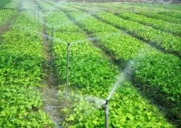 Áp dụng công nghệ tưới nước tiên tiến giúp nâng cao năng suất chất lượng