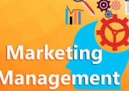 Phần lớn doanh nghiệp nhỏ và vừa vẫn còn lúng túng trong quản trị marketing