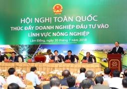 Thị trường thực phẩm hữu cơ Việt: Nhiều tiềm năng lắm thách thức