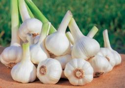 """Dinh dưỡng nâng cao sức đề kháng trong """"mùa"""" dịch Covid-19 (nCoV)"""