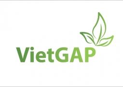 Giống và khác nhau giữa quy trình VietGap cũ và tiêu chuẩn VietGap mới