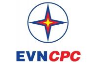 Điện lực Việt Nam